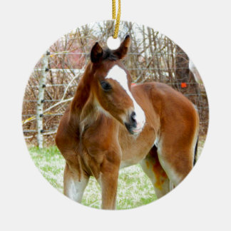 2CUTE HORSE FOAL BABY PONY ROUND CERAMIC ORNAMENT