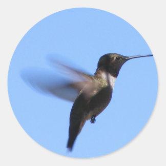 2J2 Hummingbird in Flight in a Blue Sky Classic Round Sticker