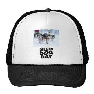 2nd February - Sled Dog Day Trucker Hat
