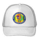 303d RR Bn 2 - ASA Vietnam Mesh Hats