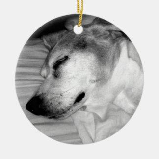 311-Custom Dog Photo Ornament