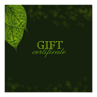 311 Dream Leaf Gift Certificate Card
