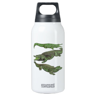 33 (9) INSULATED WATER BOTTLE