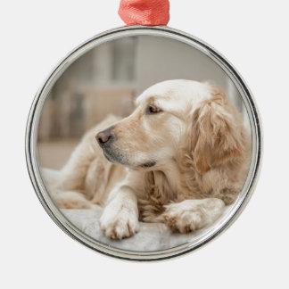 34137641_xxl metal ornament
