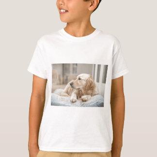 34137641_xxl T-Shirt