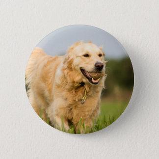 34520685_xxl 2 inch round button