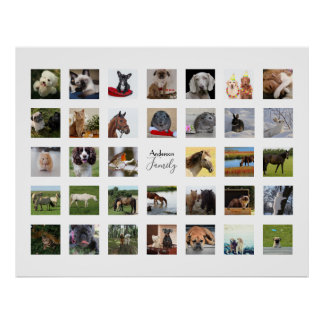34 PHOTO COLLAGE with TEXT Keepsake - ANY Occasion Poster