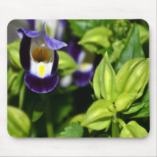 365flowers RedGage Challenge Mouse Pad