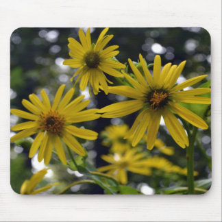365flowers RedGage Challenge Mouse Pads