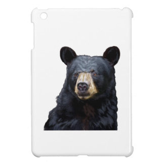 3 (10) iPad MINI CASE