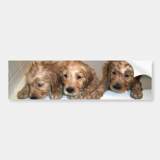 3 Boys in the Tub Bumper Sticker
