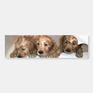 3 Boys in the Tub Bumper Sticker