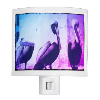 3 Colorful Pelicans Nite Light