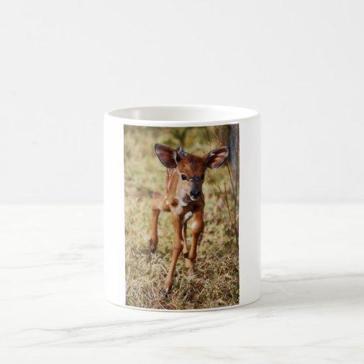 3 day old baby Nyala deer Coffee Mugs