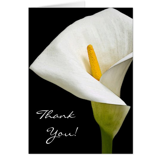 3 Elegant Cala Lily -Thank  You Card
