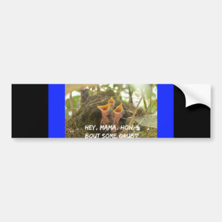 3 Hungry Baby Birds In Nest Bumper Sticker