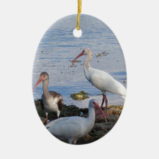 3 Ibis on the shore of Florida Bay Ceramic Ornament