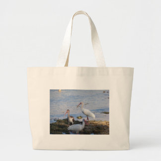 3 Ibis on the shore of Florida Bay Large Tote Bag