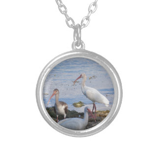 3 Ibis on the shore of Florida Bay Silver Plated Necklace