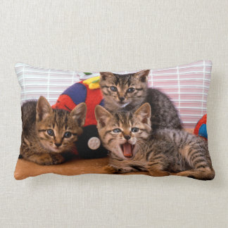 3 Kitties Lumbar Pillow