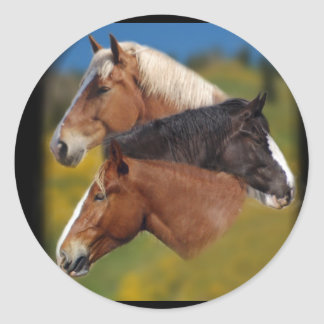 3 mare heads classic round sticker