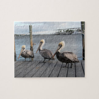 3 Pelicans in a row Jigsaw Puzzle