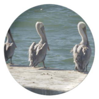 3 Pelicans Plate