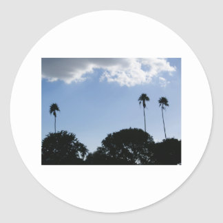 3 Tall Palms Round Sticker