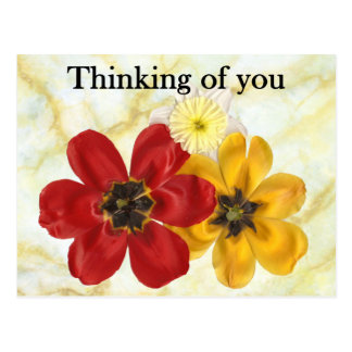 3 Thinking of you Postcard