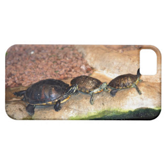 3 Turtle Friends Case For The iPhone 5