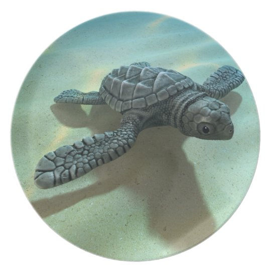 3d Baby Sea Turtle Plate