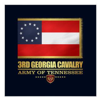3rd Georgia Cavalry (F10) Poster
