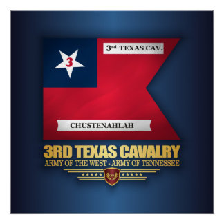 3rd Texas Cavalry Poster