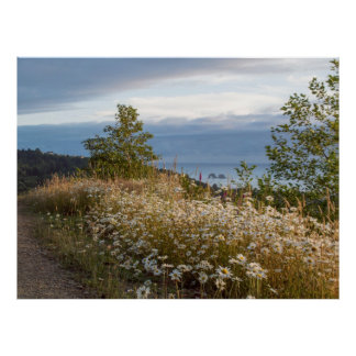 """48"""" x 36"""", Twin Rocks Summer View at Dusk Poster"""