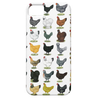 49 Chicken Hens Case For The iPhone 5