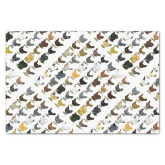 49 Chicken Hens Tissue Paper