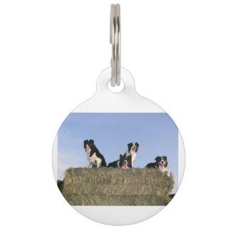 4 border collies pet ID tags