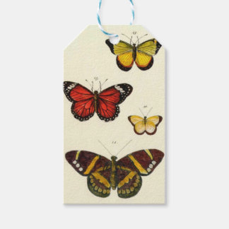 4 butterflies pack of gift tags