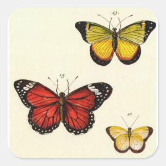 4 butterflies square sticker