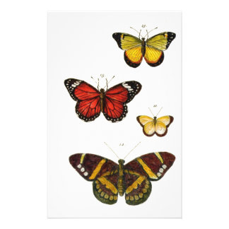 4 butterflies stationery