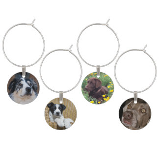4 Dog Photographs Wine Glass Charm