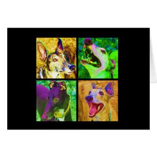4 greyhounds card