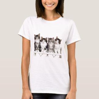 4 kittens on a bench T-Shirt