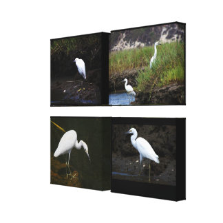 4 Little Egrets Wrapped Canvas