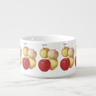 4 vintage apples illustrated cup