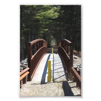 "4"" x 6"" print of hiking trail Bridge"