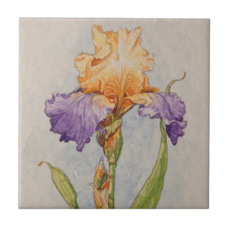 5310 Purple and Gold Iris Tile