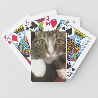 53A8BD56-D922-4A96-881D-084F21DBBEC9 BICYCLE PLAYING CARDS