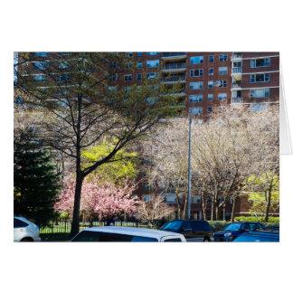 59th Street Central Park South Card