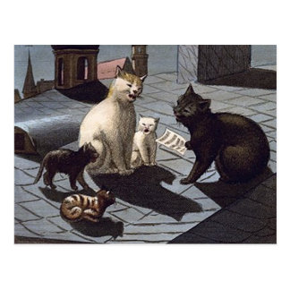 5 Cats with music sheet singing on a roof at night Post Card